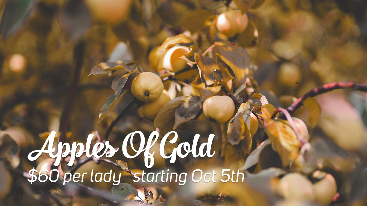 apples-of-gold-2015